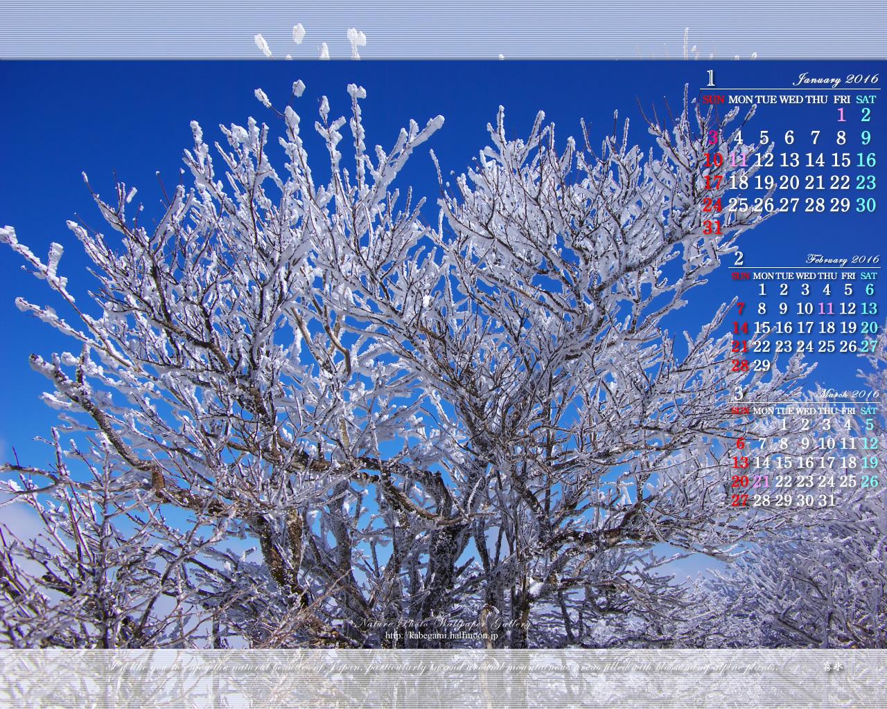 カレンダー 3ヶ月カレンダー 無料 : 今月の壁紙カレンダー「霧氷の ...