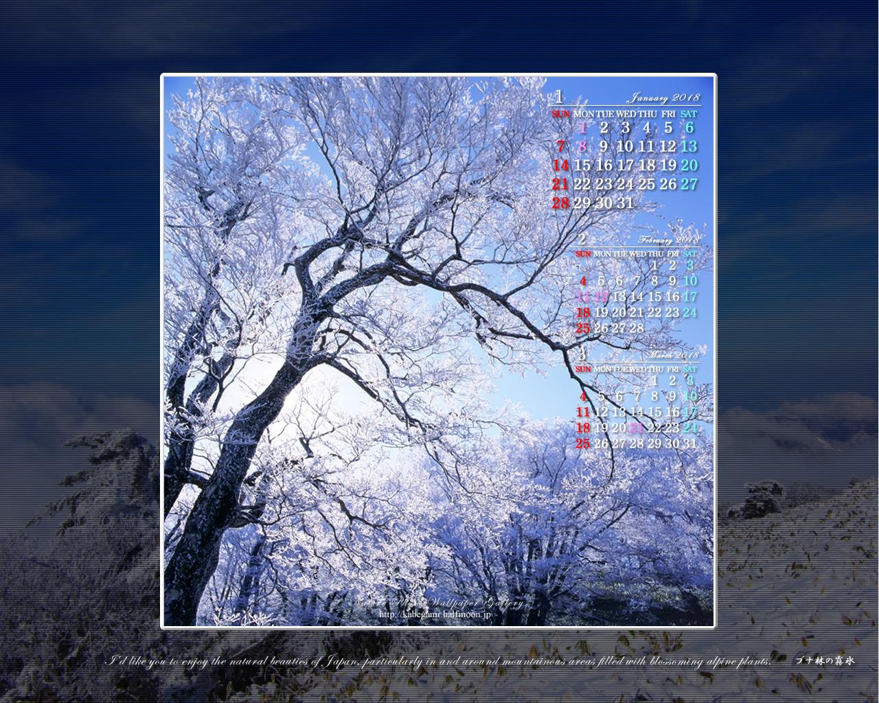 18年1月の無料カレンダー壁紙 1280x1024 霧氷林 石鎚自然写真館